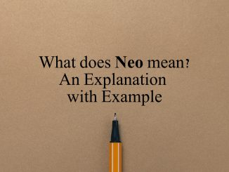 What does neo mean? Explaining neo meaning.