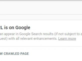 How (Ways) to Check Whether Google has Indexed the Blog Post or Not